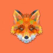 Tableau animaux renard orange 50x50 kenani