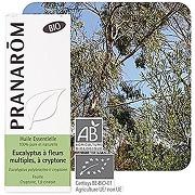 Huile essentielle eucalyptus fleurs a cryptone...