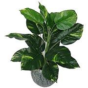 Leaf design uk plante artificielle en plastique...