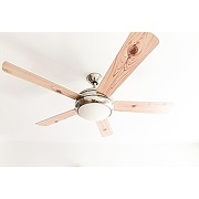 Aireryder fn75537 ventilateur de plafond ursa...