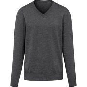 Le pull col v 100% cachemire peter hahn...