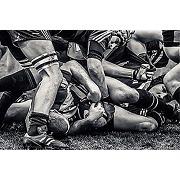 Scenolia tableau sur toile rugby 60 x 40 cm |...