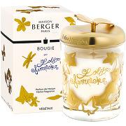 Maison berger lolita lempicka bougie parfumée...