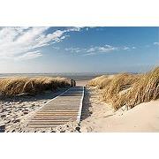 Scenolia tableau sur toile chemin des dunes 60...