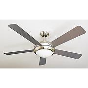 Aireryder fn75539 ventilateur de plafond ursa...
