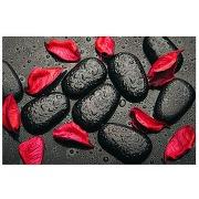 Tableau zen galets noirs et feuilles rouges 80...
