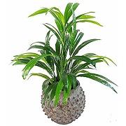 Leaf leaf-7140 grande plante artificielle en...