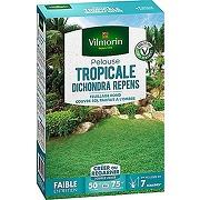 Vilmorin 4346012 pelouse tropicale dichondra...
