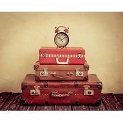 Tableau voyage suitcases travel 50x50