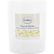 Galeo bougie bougie naturelle 180 gr fleurs de...