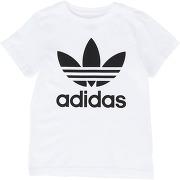 Trefoil tee t-shirt adidas originals femme...
