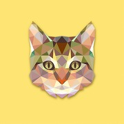 Tableau animaux chat jaune 80x80