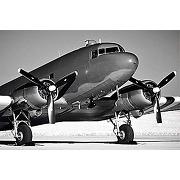 Scenolia tableau sur toile avion douglas dc3 60...