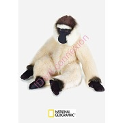 Peluche gibbon national geographic